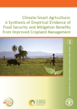Climate-Smart Agriculture: A Synthesis of Empirical Evidence of Food Security and Mitigation Benefits from Improved Cropland Management