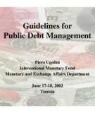 Guidelines for Public Debt Management