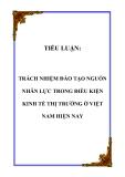 TIỂU LUẬN:  TRÁCH NHIỆM ĐÀO TẠO NGUỒN NHÂN LỰC TRONG ĐIỀU KIỆN KINH TẾ THỊ TRƯỜNG Ở VIỆT NAM HIỆN NAY