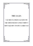 TIỂU LUẬN: VAI TRÒ CỦA PHÁP LUẬT ĐỐI VỚI VIỆC HÌNH THÀNH VÀ PHÁT TRIỂN Ý THỨC ĐẠO ĐỨC Ở NƯỚC TA HIỆN NAY