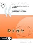 foreign direct investment in china electronic resource