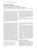 Báo cáo Y học: Lectin–sugar interaction Calculated versus experimental binding energies