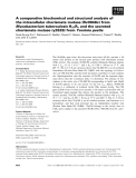 Báo cáo Y học: A comparative biochemical and structural analysis of the intracellular chorismate mutase (Rv0948c) from Mycobacterium tuberculosis H37Rv and the secreted chorismate mutase (y2828) from Yersinia pestis