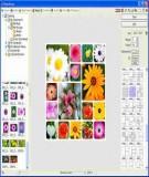 Hướng dẫn sử dụng PhotoScape - phần mền chỉnh sửa ảnh dễ dùng
