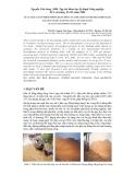 """Báo cáo """" Xử lý trấu gây ô nhiễm ở đồng bằng sông Cửu Long theo cơ chế phát triển sạch """""""