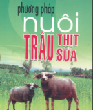 Ebook Phương pháp nuôi trâu thịt, trâu sữa - Việt Chương