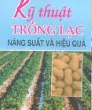 Ebook Kỹ thuật trồng lạc năng suất và hiệu quả - Phạm Văn Thiều