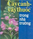 Ebook Cây cảnh - cây thuốc trong các nhà trường - Nguyễn Hữu Đảng