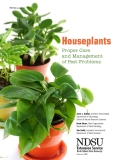 Houseplants Proper Care  and Management  of Pest Problems