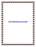 Bồ câu hầm đông trùng hạ thảo