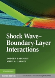 Shock Wave–Boundary-Layer Interactions