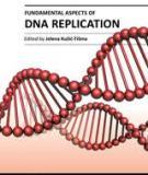 Fundamental Aspects of DNA Replication Edited by Jelena Kušić-Tišma