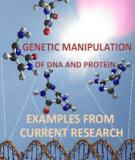 Genetic Manipulation of DNA and Protein – Examples from Current Research Edited by David Figurski