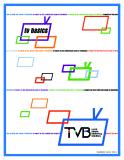 TVB LOCAL MEDIA MARKETING SOLUTIONS