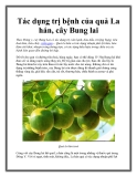 Tác dụng trị bệnh của quả La hán, cây Bung lai