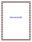 Rượu vang trị SARS