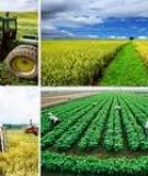 Quy định việc lập, thẩm định, phê duyệt quy hoạch nông thôn mới  trên địa bàn xã.