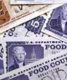 USE OF BIOMETRIC IDENTIFICATION TECHNOLOGY TO REDUCE FRAUD IN THE FOOD STAMP PROGRAM: FINAL REPORT