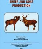 PART- III   SHEEP AND GOAT  PRODUCTION
