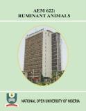 AEM 622:  RUMINANT ANIMALS