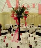 Hoa cưới thích hợp cho đám cưới nhiệt đới