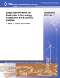 Large-Scale Pyrolysis Oil  Production: A Technology  Assessment and Economic  Analysis