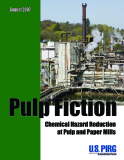 PULP FICTION - Chemical Hazard Reduction at  Pulp and Paper Mills