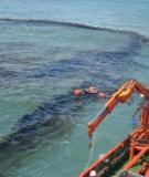 Xây dựng phần mềm và hệ cơ sở dữ liệu phục vụ công tác cảnh báo, tư vấn và đánh giá thiệt hại do sự cố tràn dầu tạo Khánh Hòa- giai đoạn I