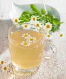 Trà hoa cúc và công dụng của nó