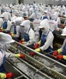 Báo cáo nghiên cứu Năng lực cạnh tranh của doanh nghiệp xuất khẩu trong ba ngành may mặc, thủy sản và điện tử ở Việt Nam