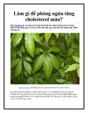 Làm gì để phòng ngừa tăng cholesterol máu?