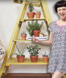 Tuyệt chiêu trữ đồ: Yêu lắm cầu thang cũ!