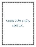 CHÉN CƠM THỪA CÒN LẠI.