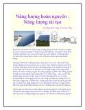 Năng lượng hoàn nguyên : Năng lượng tái tạo KS Đặng Đình Cung