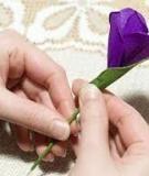 Tự làm hoa tím xinh, yêu, điệu điệu