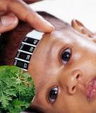 Bài thuốc trị cảm sốt cho bé từ ngải cứu