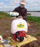 Luận văn:Nghiên cứu xử lý hợp chất Clo hữu cơ bằng quá trình Hydrodeclo hóa trên xúc tác sử dụng y-Al2O3 làm chất mang