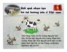 Kết quả chọn tạo bò lai sữa ở Việt nam