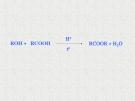 Enzym và xúc tác sinh học