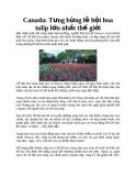 Canada: Tưng bừng lễ hội hoa tulip lớn nhất thế giới