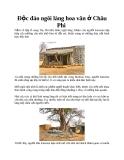 Độc đáo ngôi làng hoa văn ở Châu Phi