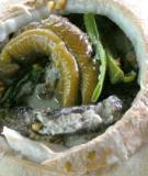 Lươn om nước dừa