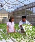 Cẩm nang ngành lâm nghiệp: Quản lý sâu bệnh hại rừng