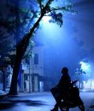 Tín Hiệu Trong Đêm