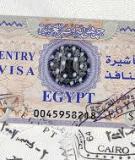 Tờ Khai Visa