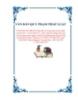 VĂN BẢN QUY PHẠM PHÁP LUẬTSỐ 08/2013/TT-BGTVT Sửa đổi, bổ sung một số quy định của QCVN 17:2011/BGTVT