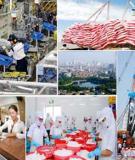 Hệ lụy vĩ mô của chính sách công nghiệp ở Việt Nam