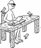 Người Trêu Chim