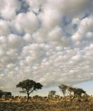 Nhẹ Như Mây Trời