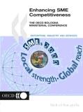 enhancing sme competitiveness